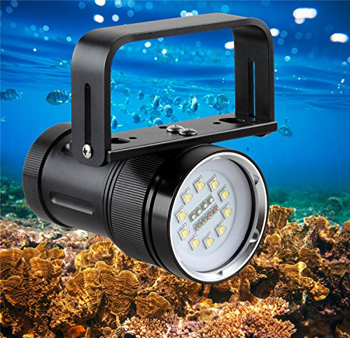 BlueFire 5000 Lumens Diving Light Underwater Photography Professional Scuba Diving Flashlight with 10 XM-L2 LEDs + 4 Red LEDs + 4 Blue LEDs