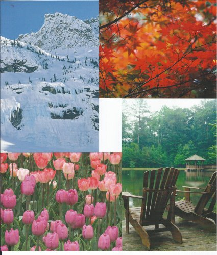 4 POSTCARDS (1 EACH...SPRING, SUMMER, FALL & WINTER) HARLEQUIN ENTERPRISES 2006