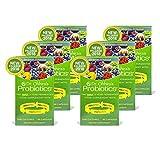Dr. Ohhira's Probiotics Original Formula, 60 Caps (6 pack)