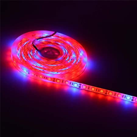 5050 SMD Red Blue 5:1 Grow Light Strip Plant Light for Indoor Plants Hydroponics