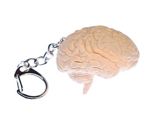miniblings Anillo de Llavero llaveros Cerebro Organ Human Anatomy