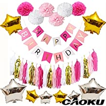 Happy Birthday Balloons,Aluminum Foil Banner Balloons for Birthday Party Decorations and Supplies With Colorful Tissue Pom Pom Ball (Pink)