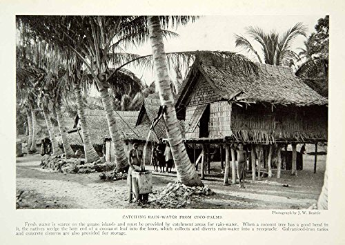 1921 Print Rain Water Native Indigenous Coco Palm Tree Island Pacific Hut NGM7 - Original Halftone - Water Hut The On