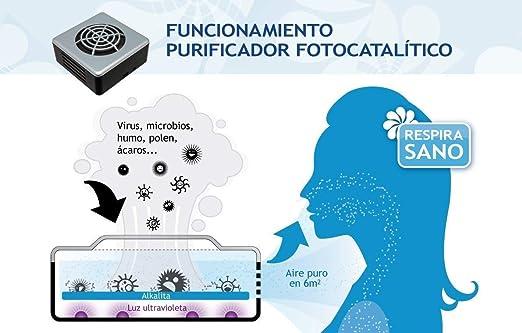 Envirotrol Anti-Virus Purificador Aire Anti-Virus, Acero, Gris ...