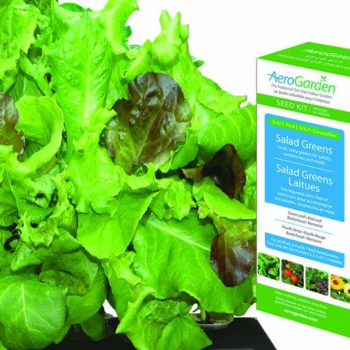 Aerogarden Salad - 8