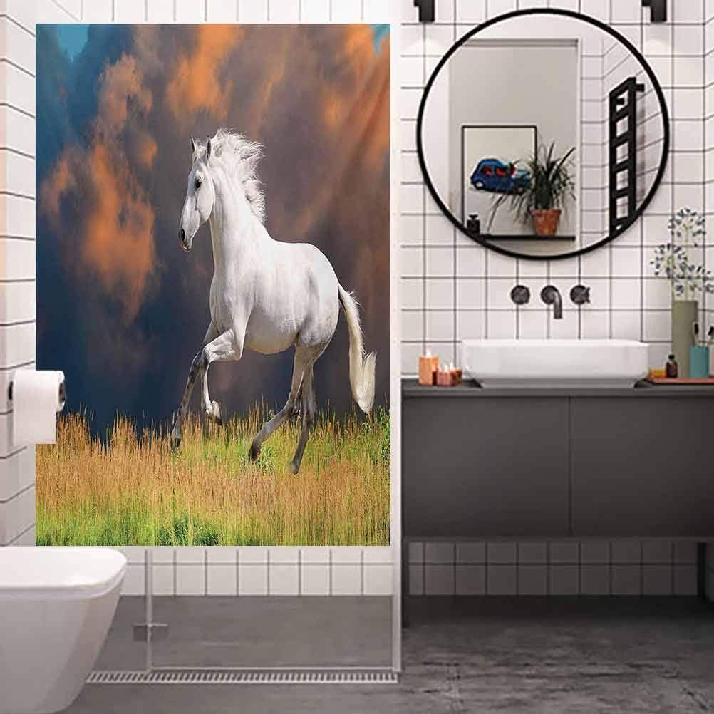 Vinilo adhesivo para ventana de ducha, caballo andaluz con una majestuosa nube de polvo, película de vidrio para el baño y la reunión de sala de ducha, 17.7 x 78.7 pulgadas