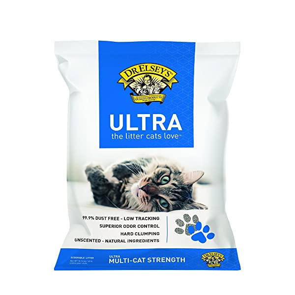 Precious Cat Clumping Litter