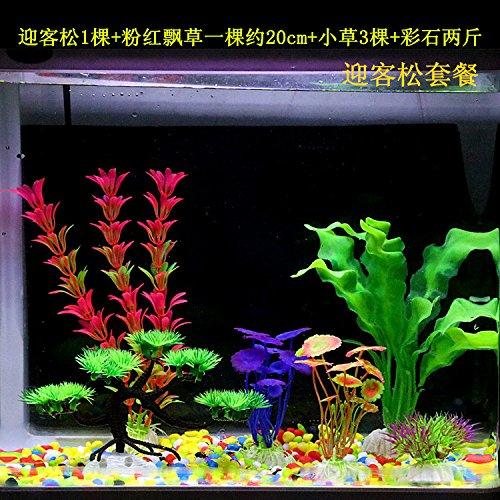 JXC-Simulación de tanque de peces pequeños animales acuáticos acuario decorativo acuático pseudo,Pino Guest-Greeting: Amazon.es: Hogar