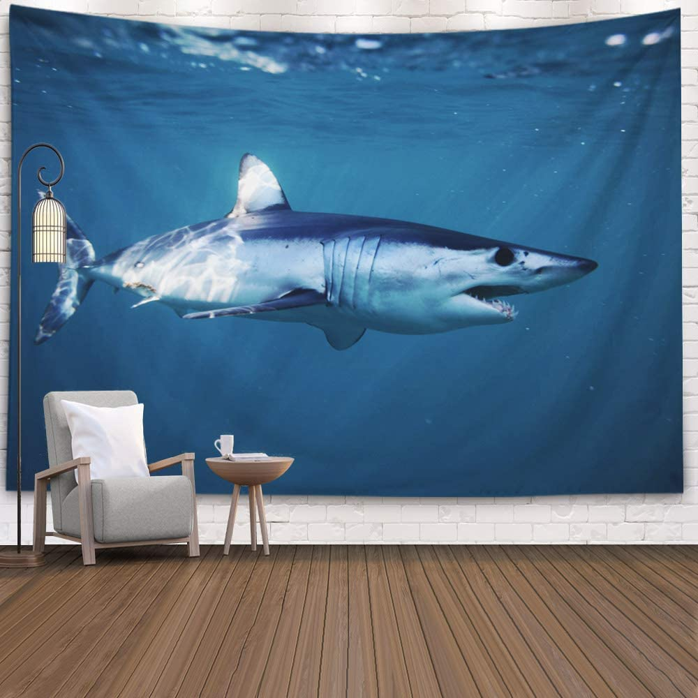Capsceoll Tapestry for Girls,60X50 Inches for Home Off South Atlantic Ocean Mako Shark, Isurus Oxyrinchus, Cape Point, Africa, Art Design with Beautiful Tapestries Wall Hangings
