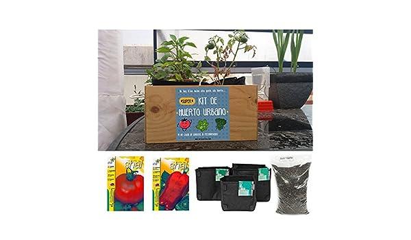 Kit de huerto urbano. Tomate y pimiento: Amazon.es: Jardín