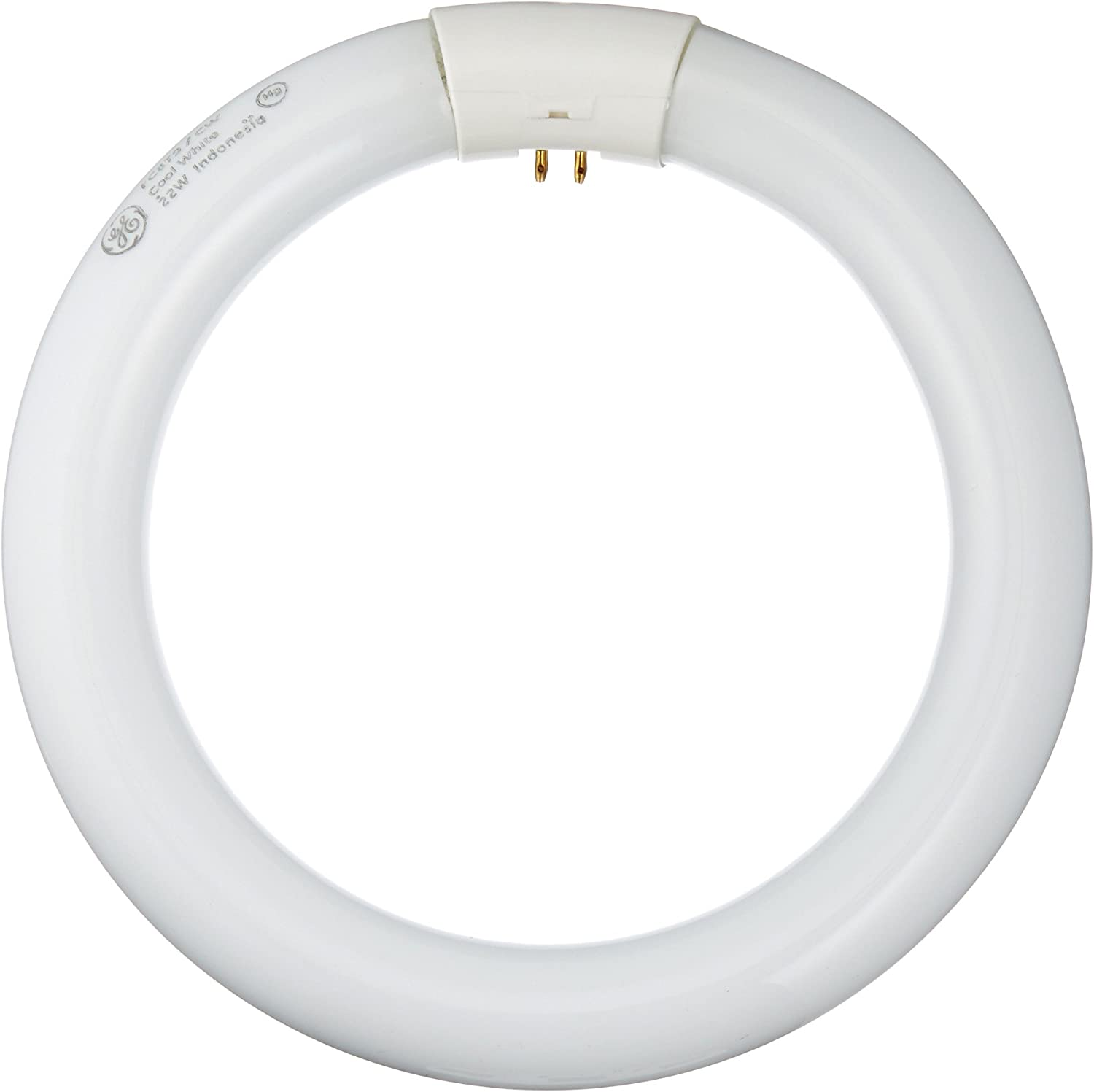 GE Lighting 33774 Cool White 8-Inch Diameter Circline Fluorescent T9 Bulb, 22-Watt