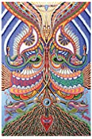 """BeWild Brand® - 3D Yes Yes Yes No No No Tapestry 60 x 90"""""""
