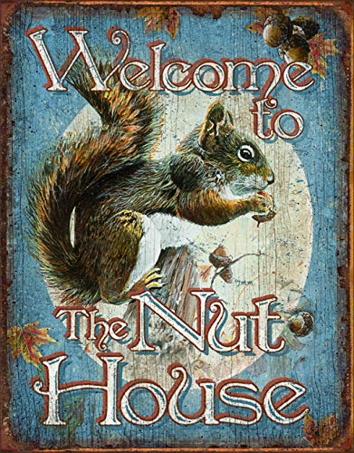 Desperate Enterprises Nut House Welcome Tin Sign