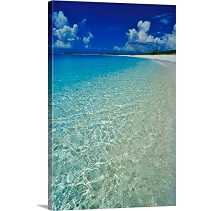 Amazoncom Greatbigcanvas Gallery Wrapped Canvas Entitled Pristine