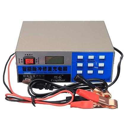 HobbyAnt - Cargador de batería para coche eléctrico de 12 V ...