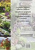 Image de Fiori e piante da coltivare in casa, terrazzo, giardino e in campagna.