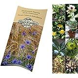 Saatgut Set:Zauberpflanzen & Schamanenpflanzen 5 ethnobotanische Sorten als Samen zur Anzucht in schöner Geschenkverpackung