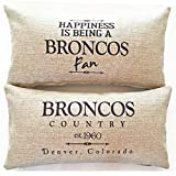 Evelyn Hope Collection Denver Broncos Fan Gift Indoor-Outdoor Throw Pillow-Football Gifts,Broncos Gifts,Bronco Pillow