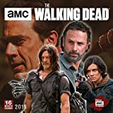 Book cover from AMC The Walking Dead 2019 Wall Calendar by AMC
