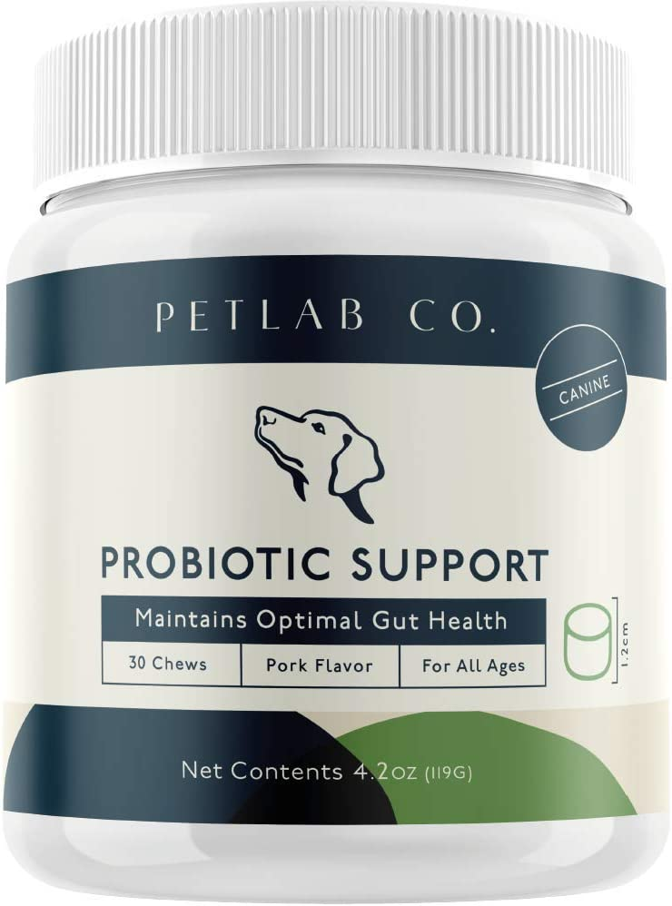 Petlab Dog Probiotic | Chewable Probiotic with 8 Strains of Beneficial Bacteria | Digestive Support | Safe for Small & Large Dogs | Natural Digestive Enzymes