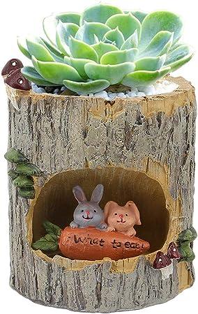 Garden Planter Flower Sedum Succulent Plant Pot Trough Box Herb Case Container