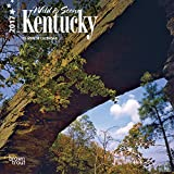 Kentucky, Wild & Scenic 2017 - 7inch x 7inch USA Hanging Mini Square Wall Photographic America State Nature Planner Calendar (Multilingual Edition)