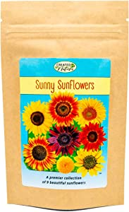 Sunflower Seed Mix to Plant - A Sunny Collection of 9 Beautiful Sunflowers - Easy to Grow Wildflowers
