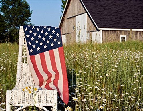(AOFOTO 9x7ft American Flag On Chair Backdrop Countryside Wildflower Photography Background Rustic Meadow Patriotic Freedom Stars And Stripes Photo Studio Props Outdoor Landscape Portrait Wallpaper)
