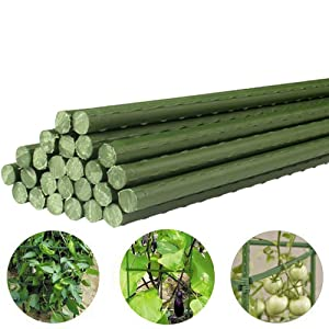 Growsun 3-Ft Garden Stakes Metal Plastic Coated Plant Cage Supports Climbing for Tomatoes,Trees,Cucumber,Fences,Beans,25 Pack