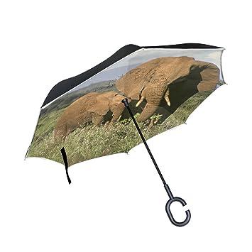 BENNIGIRY Paraguas de Doble Capa de Elefante Africano invertido, Plegable, con Protección UV Resistente