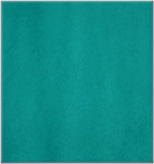 Bielmeier 028002 - Filtro lavable para purificador de aire: Amazon.es: Hogar