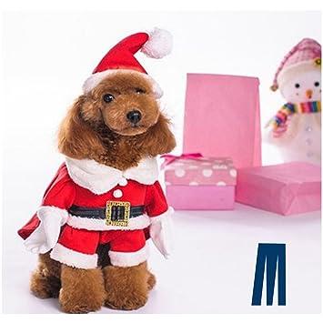 Amazon.com: Mikayoo Disfraz de Navidad para perros pequeños ...