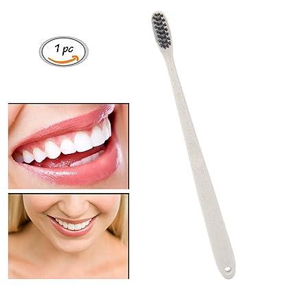 Bambú Cepillo de dientes cepillo de dientes, portátil Carbón vegetal y Trigo Mango, Deep