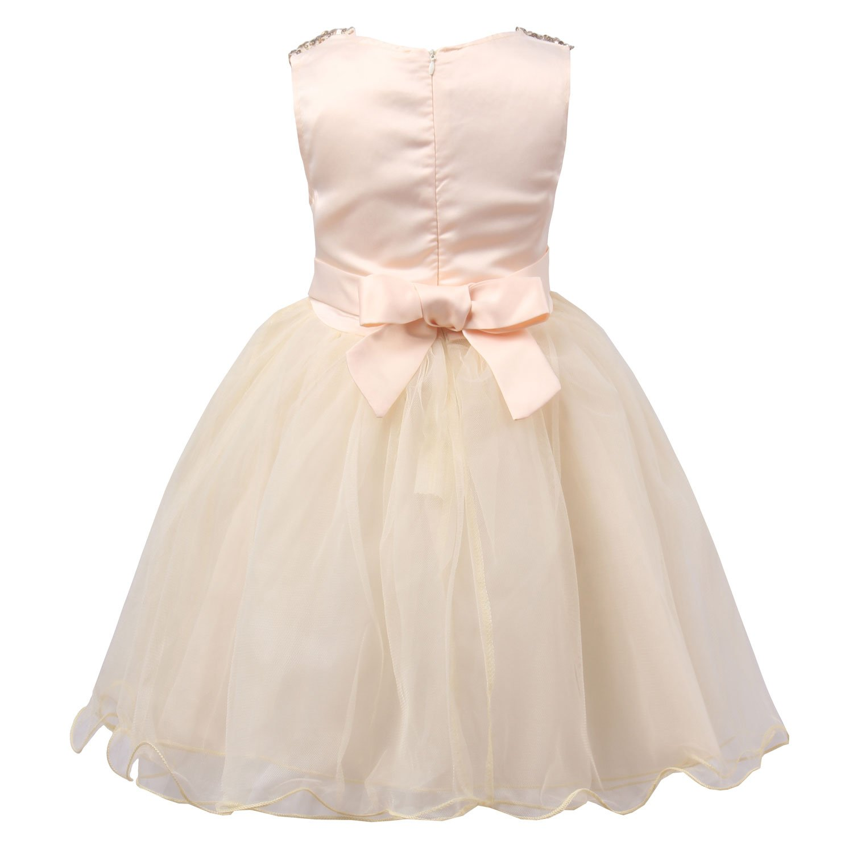 db7b7351ebc5 Amazon.com  JerrisApparel Little Girls  Sequin Mesh Flower Ball Gown ...