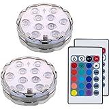 Lifeholder 潜水ライト イルミネーション 水中照明 電池式RGB LEDライト リモコン付き 花瓶 金魚鉢 水槽