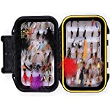LotFancy 60 PCS Dry/Wet Flies for Fly Fishing with Waterproof Fly Box - Nymph Flies, Woolly Bugger...