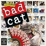 Bad Cat Wall Calendar 2019