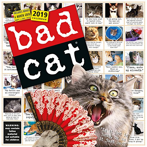 Bad Cat Wall Calendar 2019