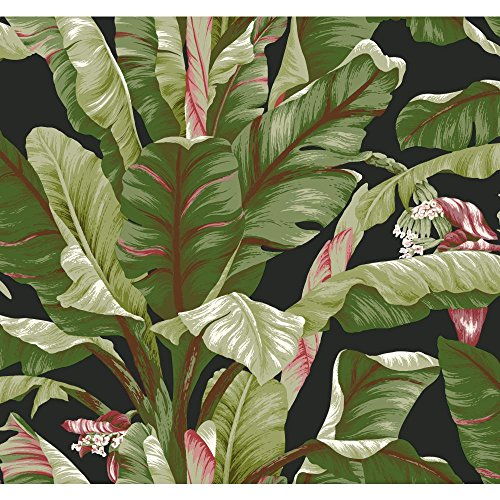 York Wallcoverings AT7071 Tropics Banana Leaf Wallpaper, ...