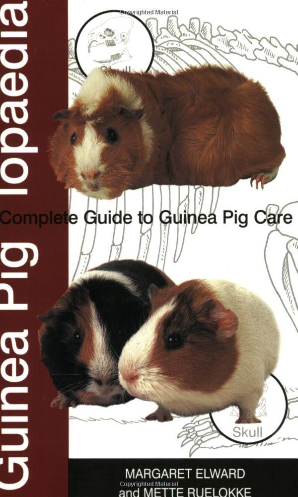 Guinea Piglopaedia: A Complete Guide to Guinea Pigs: Amazon.co.uk ...