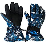 Ski Gloves - Winter Waterproof Windproof Gloves for Skiing, Cycling, Motorcycling, Hiking, Mountain Climbing, and other Winter Outdoor Sports Activities - Fits Men & Women by Hatacolo
