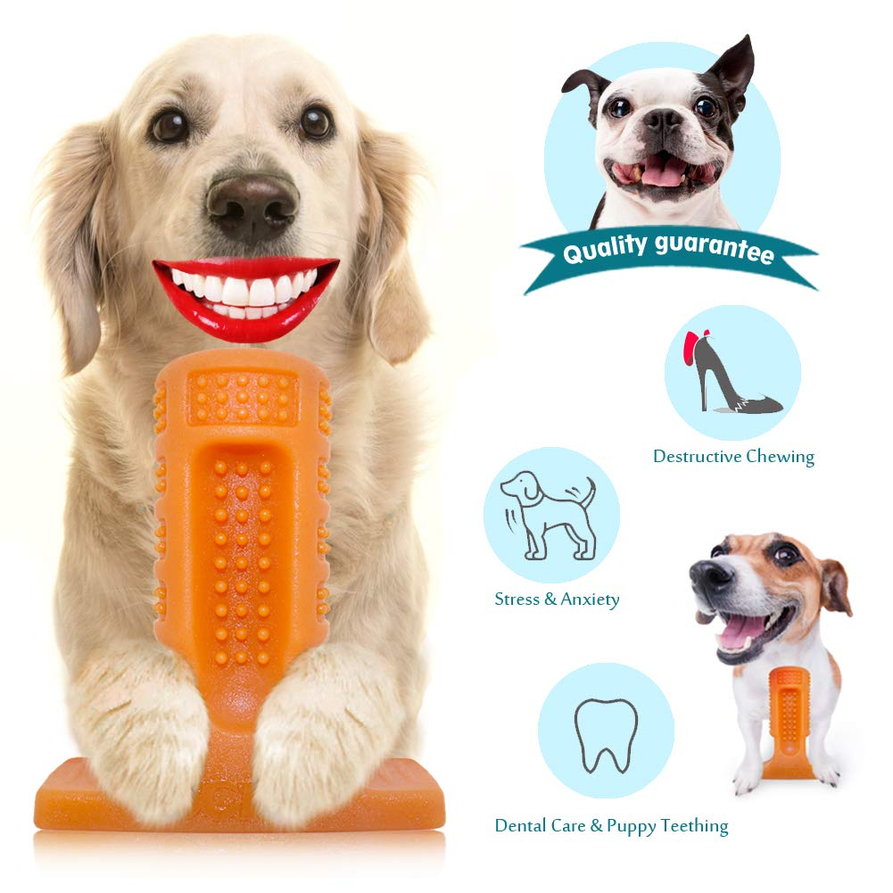 ucho Dog Toothbrush Toy Brushing Stick for Small and Medium,Dog Chew Toys Dental Care Dog Teeth Cleaning, Safe Natural Rubber Bite Resistant