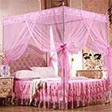 Floralby Lace Mosquito Net for Double Bed Canopy Netting Curtains for Twin Full Queen King Bed