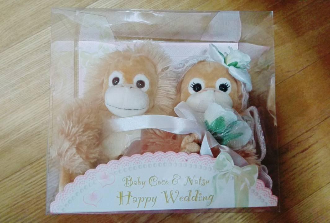 Reducción de precio Beb Coco  wedding Natsu Frijol Doll (japn importacin)