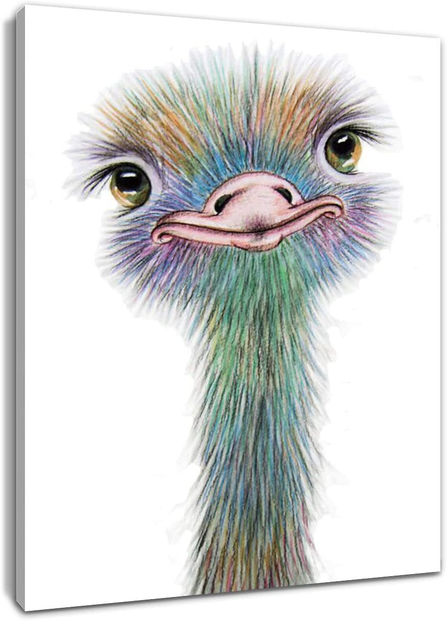 HVEST Ostrich Canvas Wall Art Watercolor Cute Animal Artwork Bird Paintings for Living Room Bedroom Bathroom Decor,Stretched and Framed Ready to Hang,12x16 inches