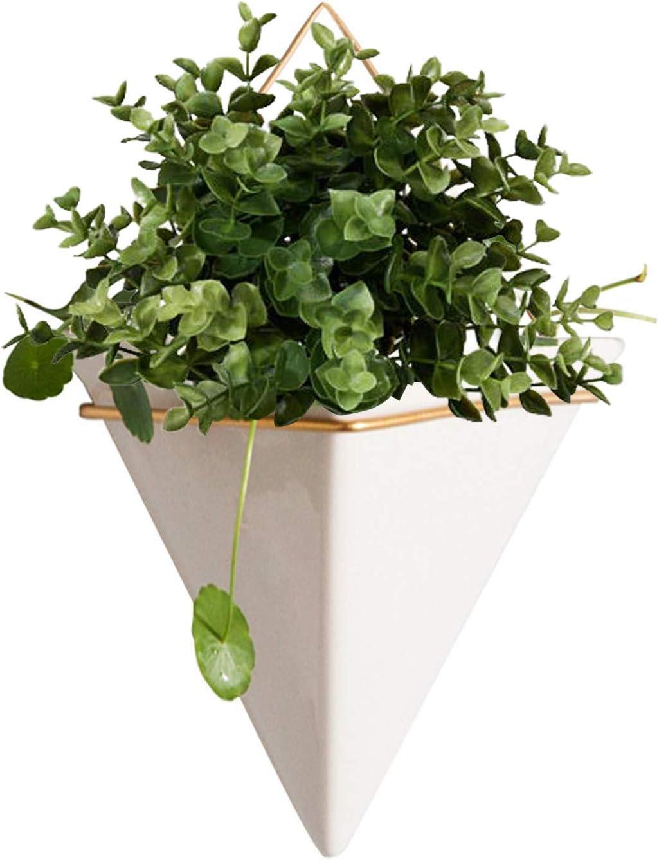 Fasmov Hanging Planter Vase & Geometric Wall Planter/Pot Hanging Decor Container for Succulent Plants & Artificial Plants Mini Cactus