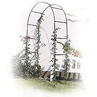 Rosenbogen Rost Rosenhilfe Rankhilfe Garten Rankgitter 150 x 50 x 220 cm Holz