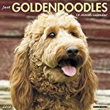 Just Goldendoodles 2018 Calendar