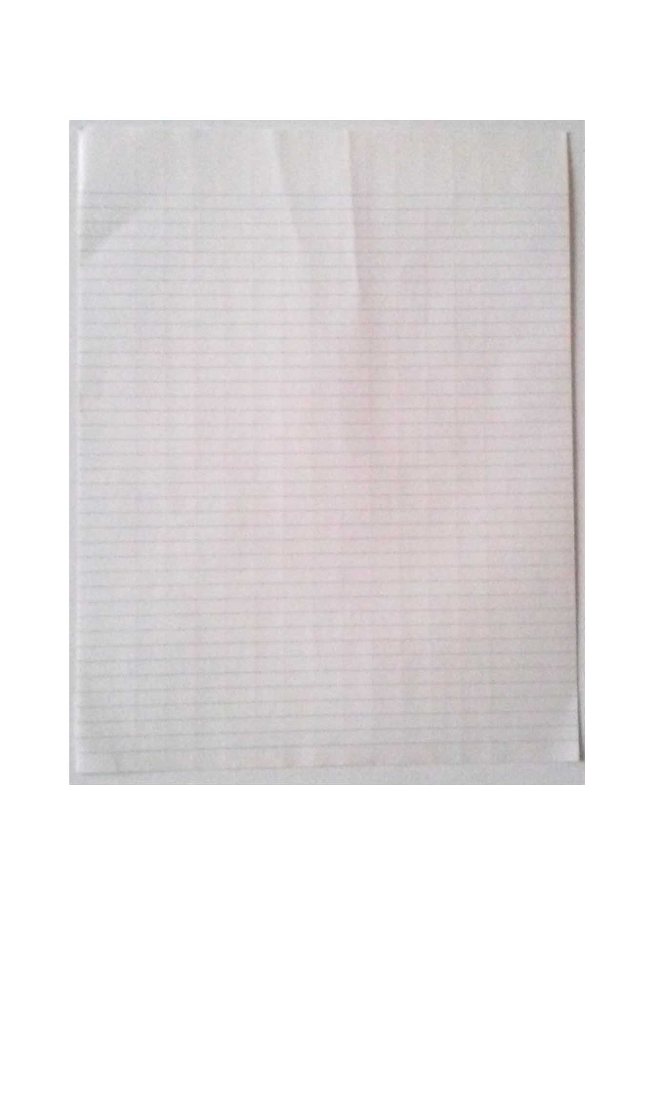 National 10 Column Columnar Sheets 8 1/2'' x 11'' Loose Sold in Packages of 20 Sheets