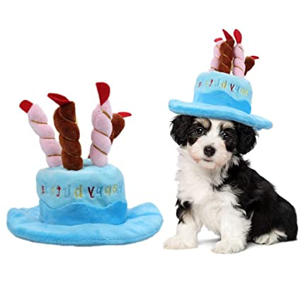 Amazon ASOCEA Dog Birthday Hat With Cake Candles Design Pet